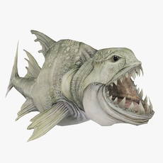 Fang Tooth Animated 3D Model