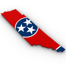 Tennessee Political Map 3D Model