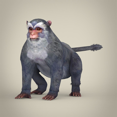 Game Ready White Monkey 3D Model