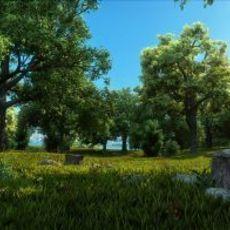 Forest Scene 8 3D Model