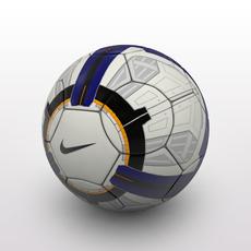 Premier League Ball 2010 3D Model