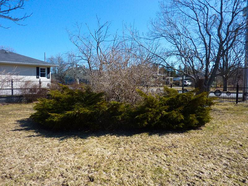 14 Elm St, Yarmouth Photo 26