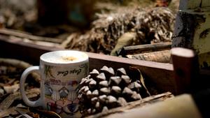 Cape Cod Coffee Cup in California Canyon
