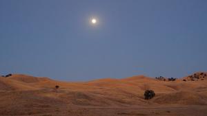 Moonlight, California