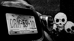 Bugs and Skulls, Chiapas, Mexico