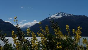 West Coast, Haast, NZ