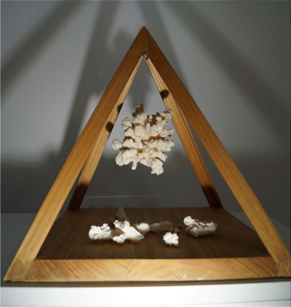 ALANA DI GIACOMO SELECTED WORKS Handmade timber containing found white coral.