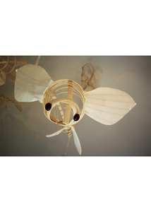Barbara Jo Fishies and Clouds wood, mulberry paper, glass