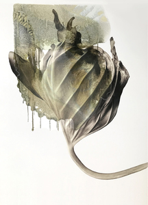 CAROL GREENAN BOUYOUCOS Petal & Leaf Archival digital print with archival film overlay