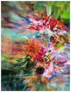 CAROL GREENAN BOUYOUCOS Archives Archival digital print