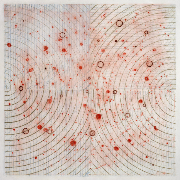 CAROLYN WEBB  What Was Scattered Gathers Drypoint and Collagraph on Toyo Gampi