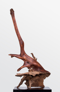 DAVID ERDMAN Available Works ocobolo river driftwood with paste wax