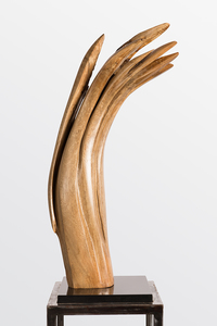 DAVID ERDMAN Available Works banyan wood with hand wax finish and black granite base