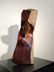 DAVID ERDMAN Available Works Rosewood handwax light side poly gloss other
