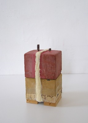 David McDonald Tiny Histories Hydrocal, Wood, Plaster Gauze, Pigment, Rebar