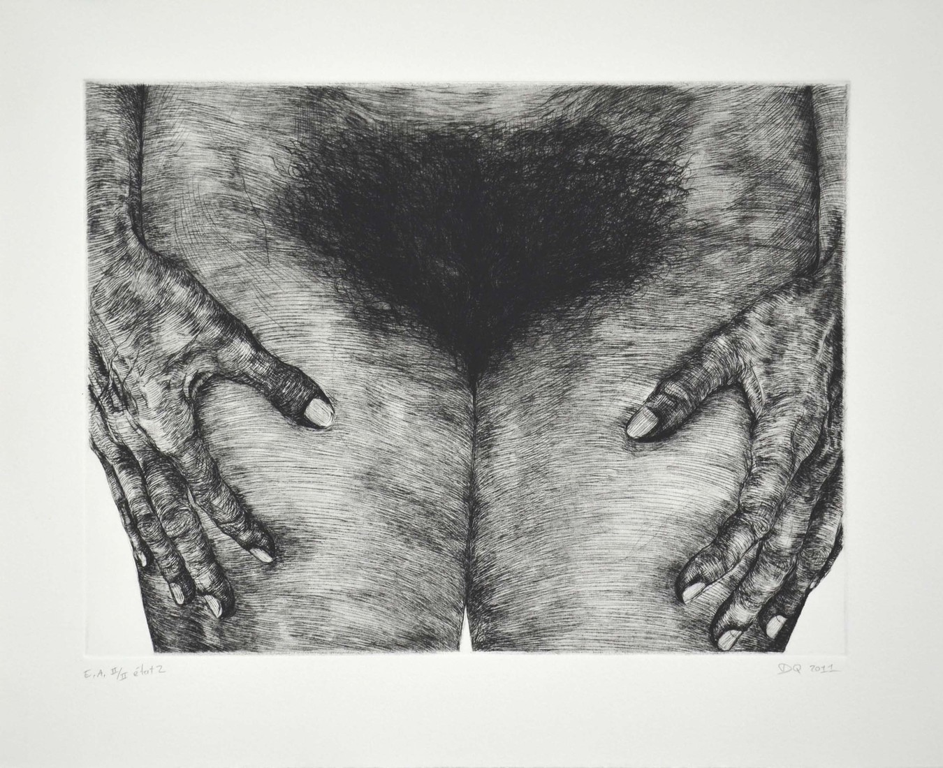 Prints / Estampes Untitled (Hips 2) / Sans titre (Hanches 2)