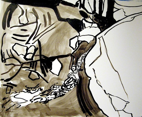 Iris Osterman Ink Drawings India ink on paper