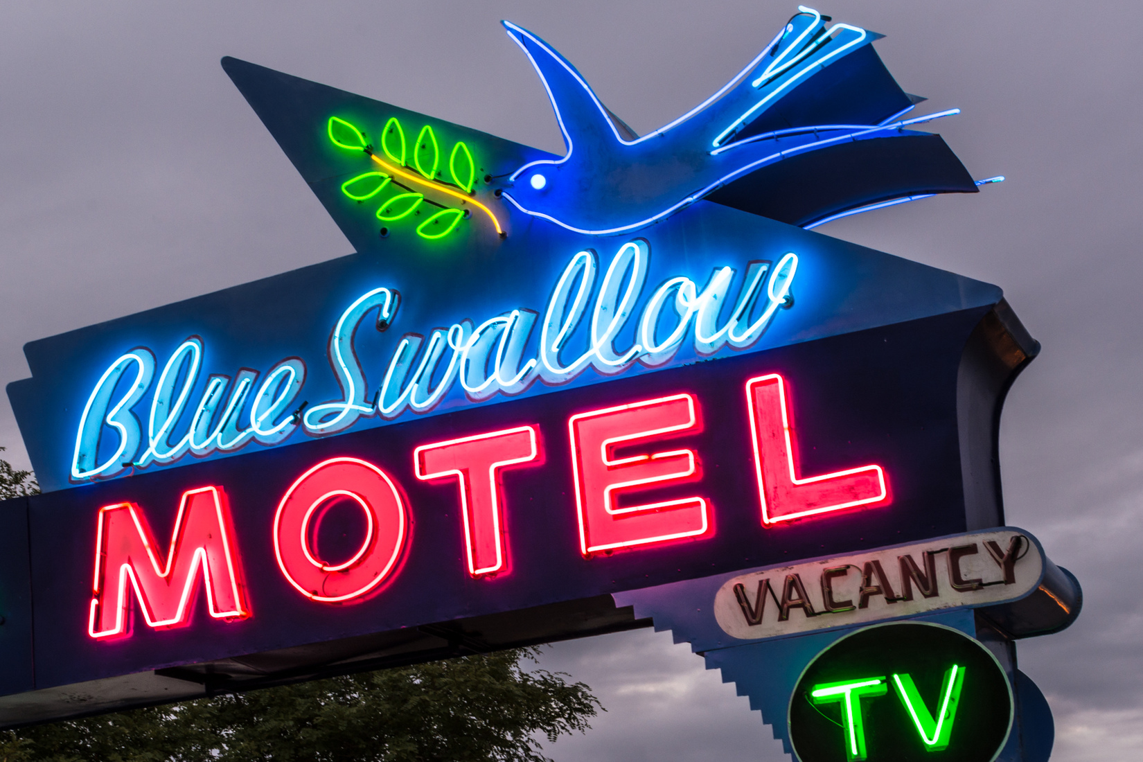Road Signs Blue Swallow Motel