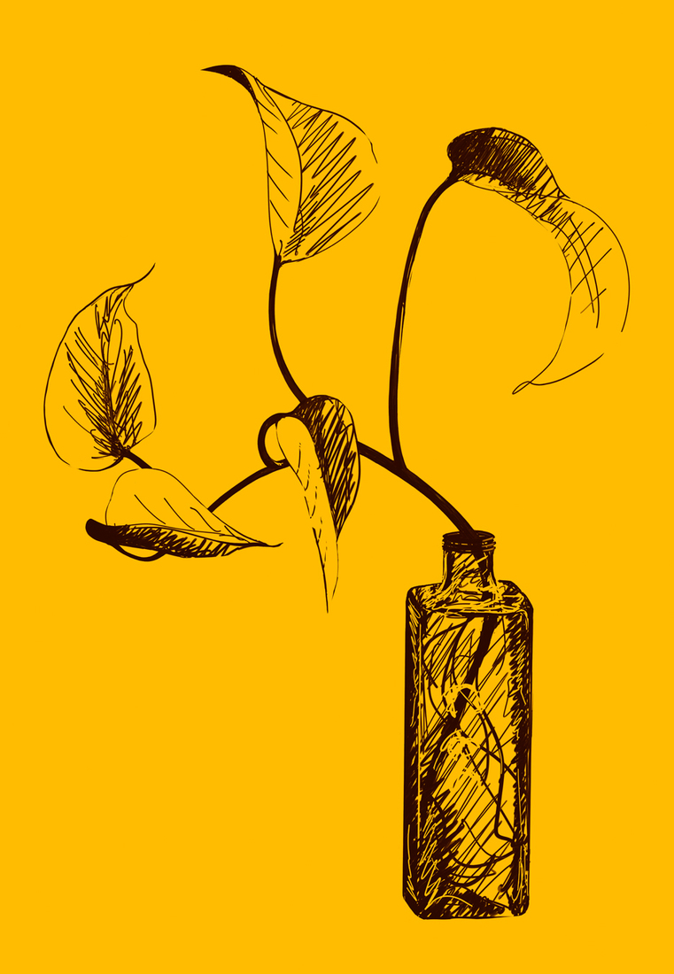 Digital Painting/Drawing Yellow Bottle
