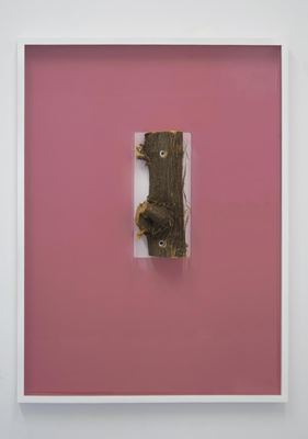 jesse robinson [frames] wood, enamel paint, glass, tint, branch, hardware