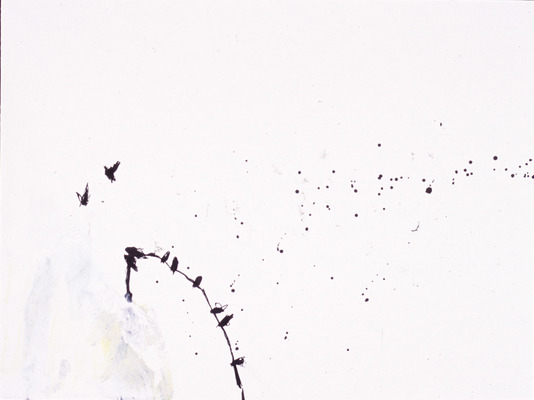 Juan-Carlos Perez Conversaciones-Bird Series ink on paper