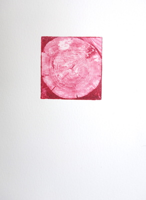 Katharine Dufault Work on Paper Solar-plate etching