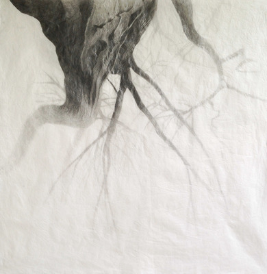 Katherine Patterson 2019 graphite on washed and ironed paper