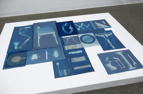 Leslie Hirst Objectively Speaking cyanotypes on silk and cotton