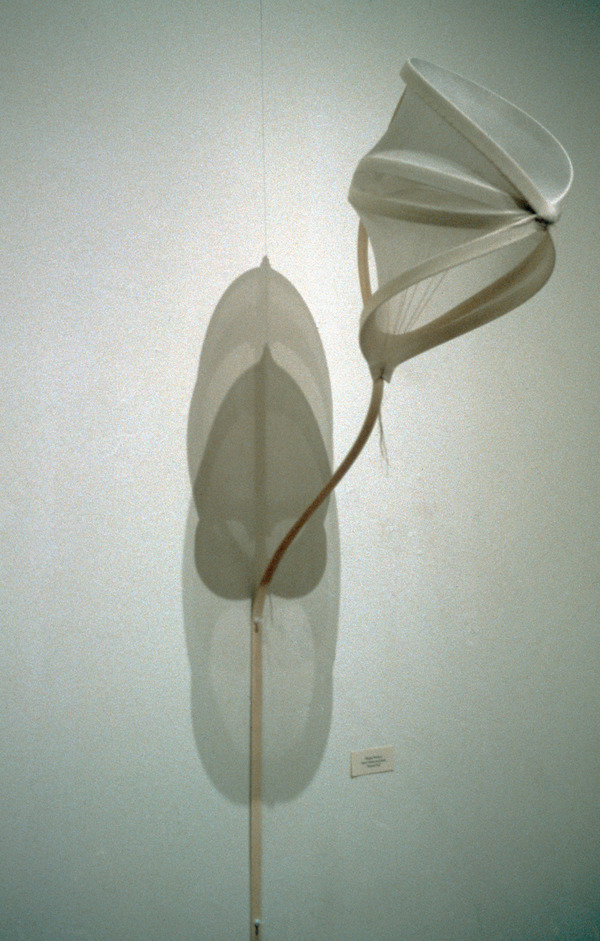 Sculpture Selections 2002-1990 Nylon fabric, plastic structure, thread