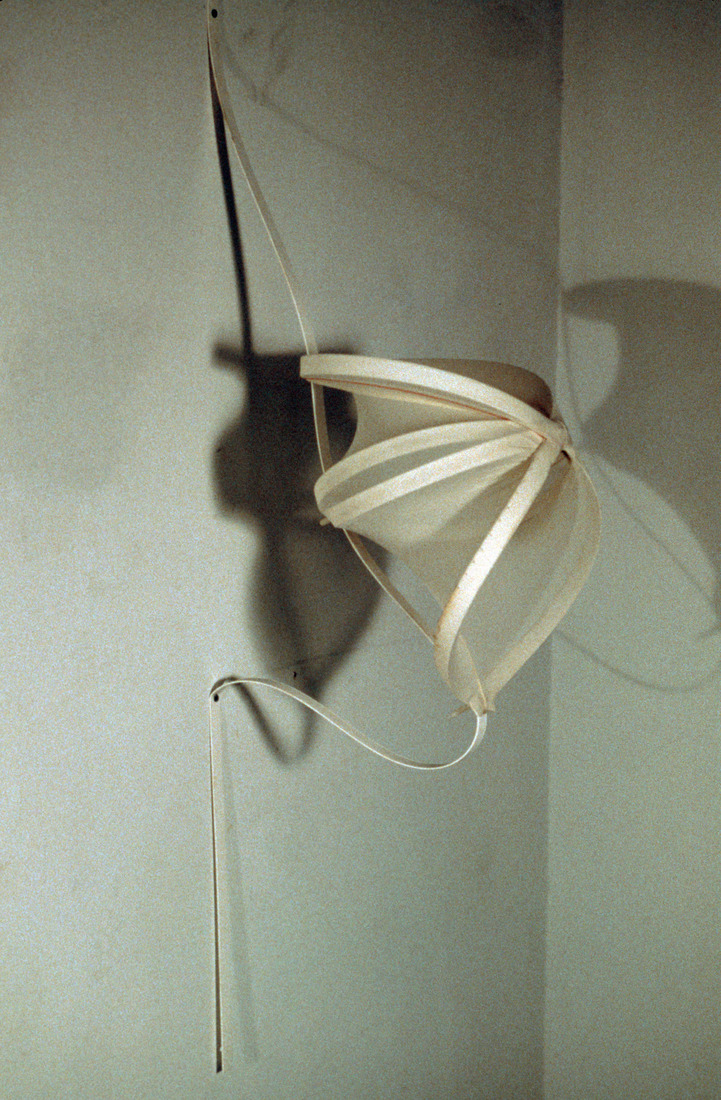 Sculpture Selections 2002-1990 Ventricle