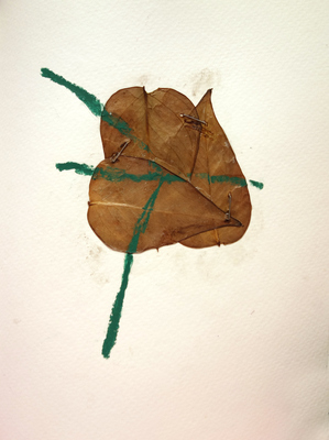 Margot Spindelman Drawings 2020 leaves, oil pastel