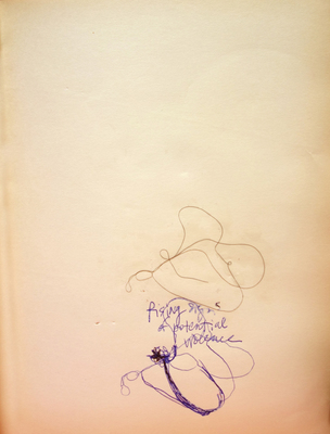 Margot Spindelman Drawings 2020 pen, hair