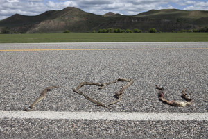 Love Notes from the Road