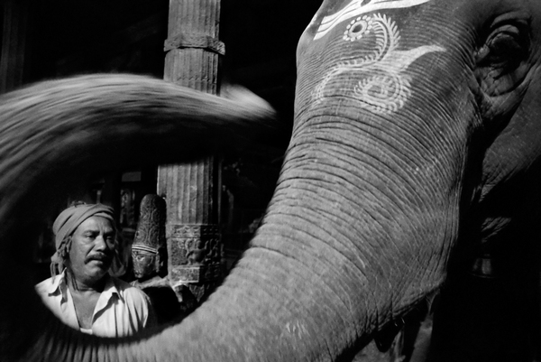 N Y  Photo Curator: Global Photography Awards- 'Where