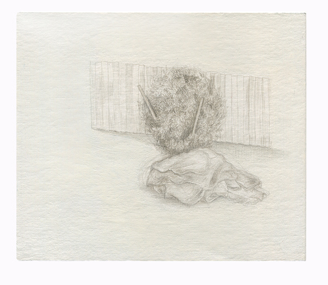Shona Macdonald Ground Covering silverpoint on absorbent ground on paper