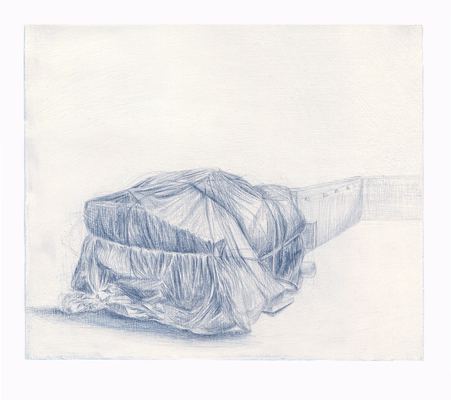 Shona Macdonald Ground Covering graphite and silverpoint on absorbent ground on paper