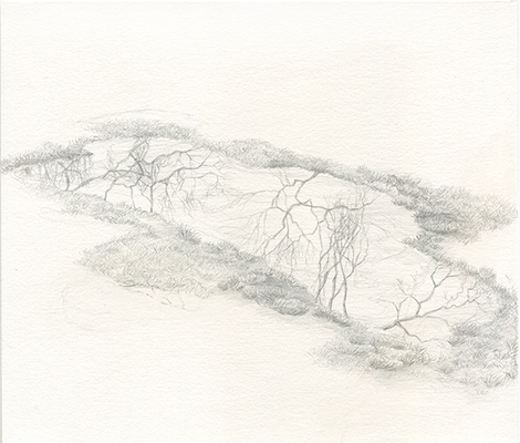 Shona Macdonald Sky on Ground Drawings silverpoint on absorbent ground on paper