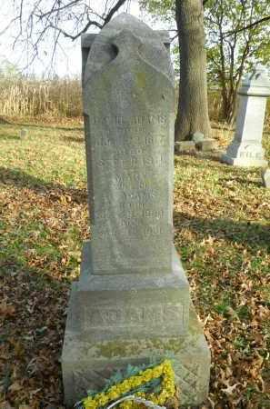 ADAMS, DAVID - Boone County, Illinois | DAVID ADAMS - Illinois Gravestone Photos