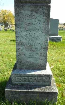 BROWN, FRANCES - Boone County, Illinois | FRANCES BROWN - Illinois Gravestone Photos
