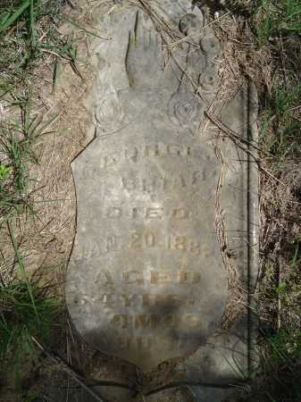 BRIAR, GEORGE - Cass County, Illinois | GEORGE BRIAR - Illinois Gravestone Photos