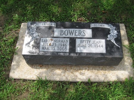BOWERS, LARRY NORMAN - Champaign County, Illinois | LARRY NORMAN BOWERS - Illinois Gravestone Photos