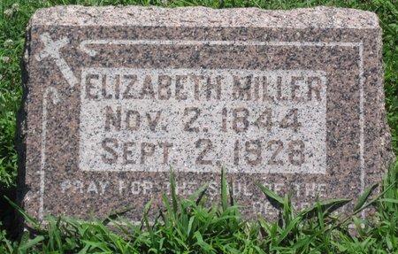 MILLER, ELIZABETH - Champaign County, Illinois | ELIZABETH MILLER - Illinois Gravestone Photos