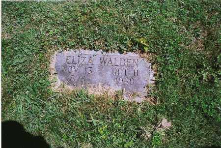 CALLAHAN WALDEN, ELIZABETH - Clark County, Illinois | ELIZABETH CALLAHAN WALDEN - Illinois Gravestone Photos