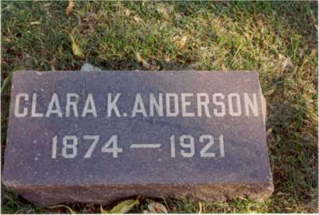 ANDERSON, CLARA - Cook County, Illinois | CLARA ANDERSON - Illinois Gravestone Photos