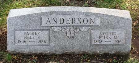 ANDERSON, ELINA M. - Cook County, Illinois | ELINA M. ANDERSON - Illinois Gravestone Photos