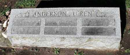 ANDERSON, SAMUEL - Cook County, Illinois | SAMUEL ANDERSON - Illinois Gravestone Photos