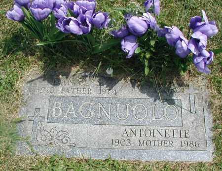 BAGNUOLO, ANTOINETTE - Cook County, Illinois | ANTOINETTE BAGNUOLO - Illinois Gravestone Photos