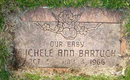 BARTUCH, MICHELE ANN - Cook County, Illinois | MICHELE ANN BARTUCH - Illinois Gravestone Photos