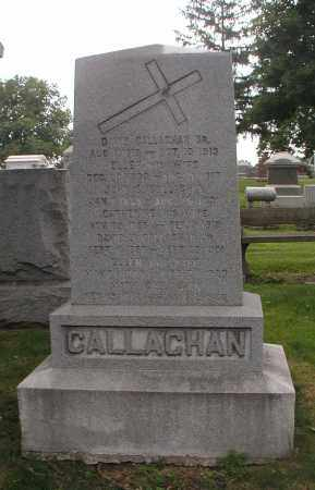 CALLAGHAN, ELLEN - Cook County, Illinois | ELLEN CALLAGHAN - Illinois Gravestone Photos