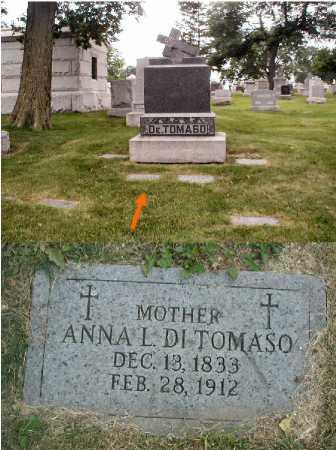 DI TOMASO, ANNA L. - Cook County, Illinois | ANNA L. DI TOMASO - Illinois Gravestone Photos